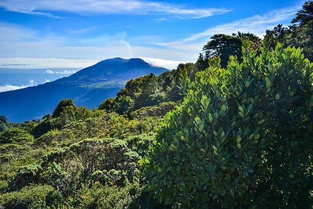 Séjour écotouristique au Costa Rica